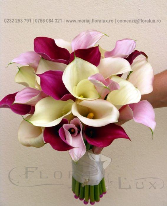 Flora Lux Mariaj Decoratiuni Nunta Pachete